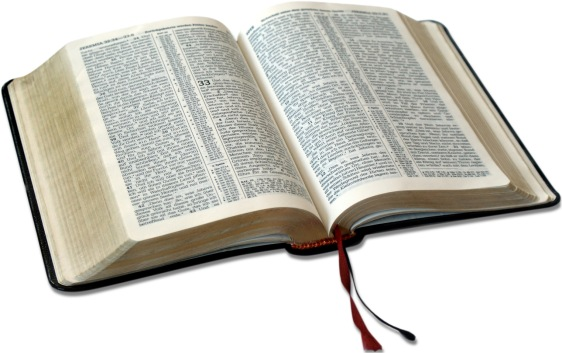 Bible-for-LIVING-THE-WORD